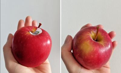Cara Hilangkan Lapisan Lilin pada Apel yang Cepat dan Efektif